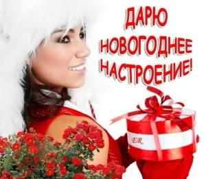IMG 03012012 201243 300x261 Новый Год и вебинар........
