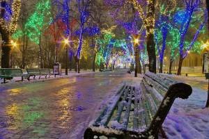 cityparkatchristmastime 1 300x200  Декабрь   месяц учебник!